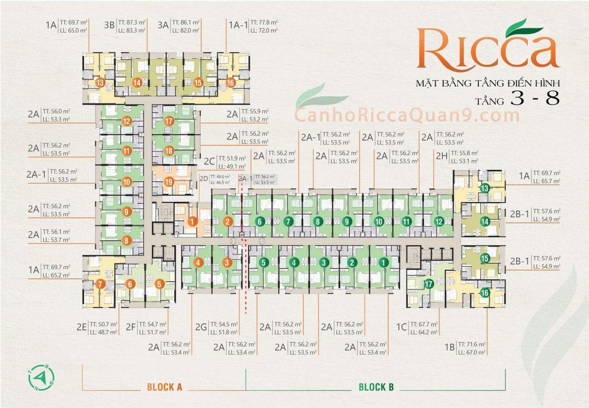 Mặt bằng tiện ích tầng 3-8 Ricca